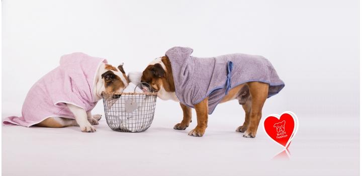 Accappatoi Bulldog Inglese